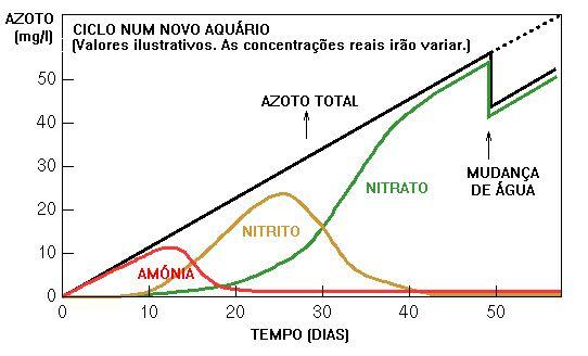 Ciclo do Azoto & Síndrome do Novo Aquário - posted in OS PRIMEIROS PASSOS NA…