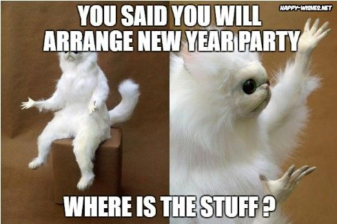 Happy New Year Memes Best Collections Of Funny Memes 2020 Funny Cat Memes Persian Cat Room Guardian Cat Memes