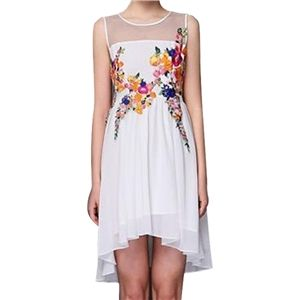 Mesh Embroidered Pleated Asymmetric Sleeveless White Dress | pariscoming