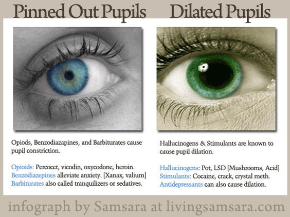 Pupil Dilation and Constriction via Drugs | health ...Dilated Pupils Drugs Picture