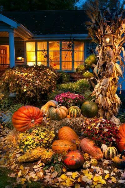 House Decorated for Fall home flowers autumn fall porch pumpkin wreath entryway fall decorating outdoor fall decorating