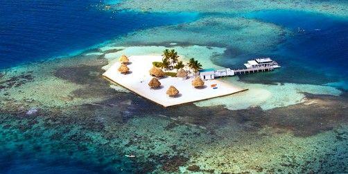 Snorkeling Wonders of the Barrier Reef Belize $69.99 per Adult