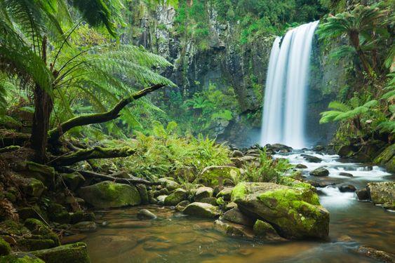Hopetoun Falls in Beech Forest - Victoria, Australia.