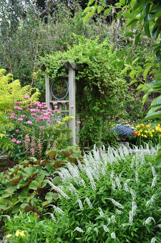 outdoorsanctuaries:    (via Three Dogs in a Garden: Making a Grand Entrance)