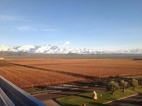 Bodega #Monteviejo (Vista Flores, #Mendoza)