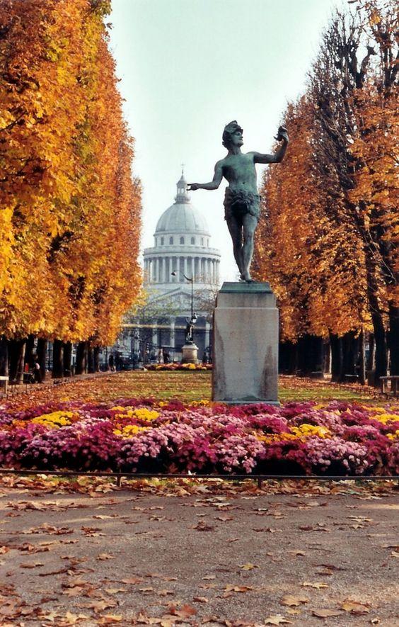 Bald eagle automne au jardin du luxembourg paris for Au jardin paris