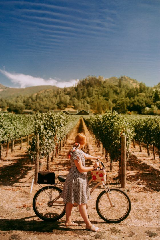 Napa Valley On A Budget How To Wine Taste For Free More Napa