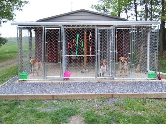 Dog kennel roof ideas bought 2 kennels set them apart for Breeding kennel designs