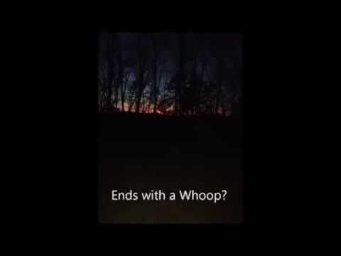 Strange Howls & Screams From The Ozark Woods