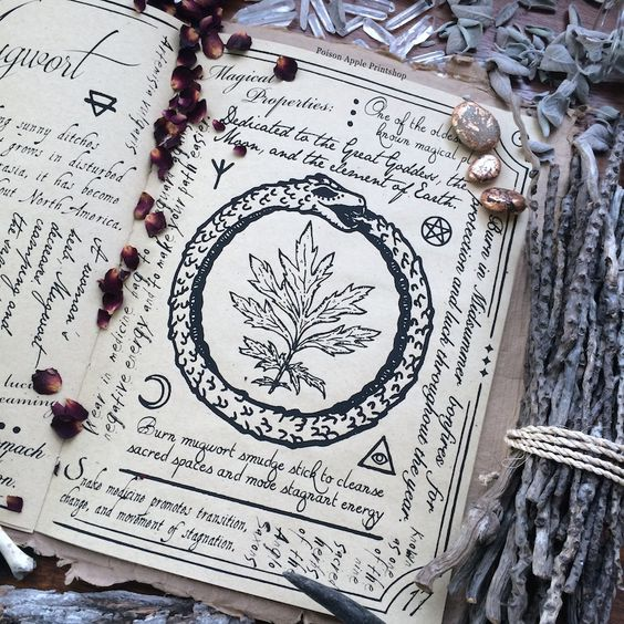 http://teawitch.tumblr.com/post/129165415990/poisonappleprintshop-a-page-from-the-hedge