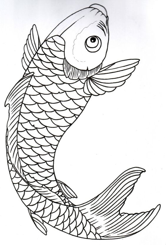 koi fish tattoos outline google search drawings