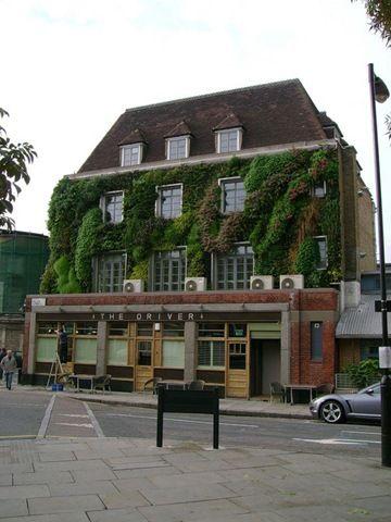 Vertical Gardens by Patrick Blanc, London
