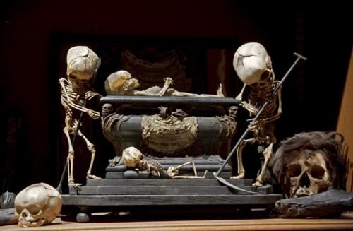 Fetal Skeleton Tableau, 17th Century, University Backroom, Paris  The Secret Museum exhibit photographed and curated by Joanna Ebstein