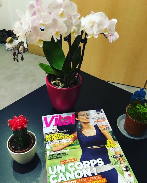 Rentrée du week end alsacien avec de nouvelles plantes  et au passage m'attendais dans la boîte aux lettres le nouveaux @vital_mag #orchid #orchidee #cactus #dionaea #carnivorousplants #plantecarnivore #vitalmag #sport #fit #fitness by jinou_67