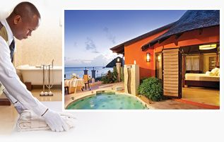 weddingmoons tropical honeymoon packages
