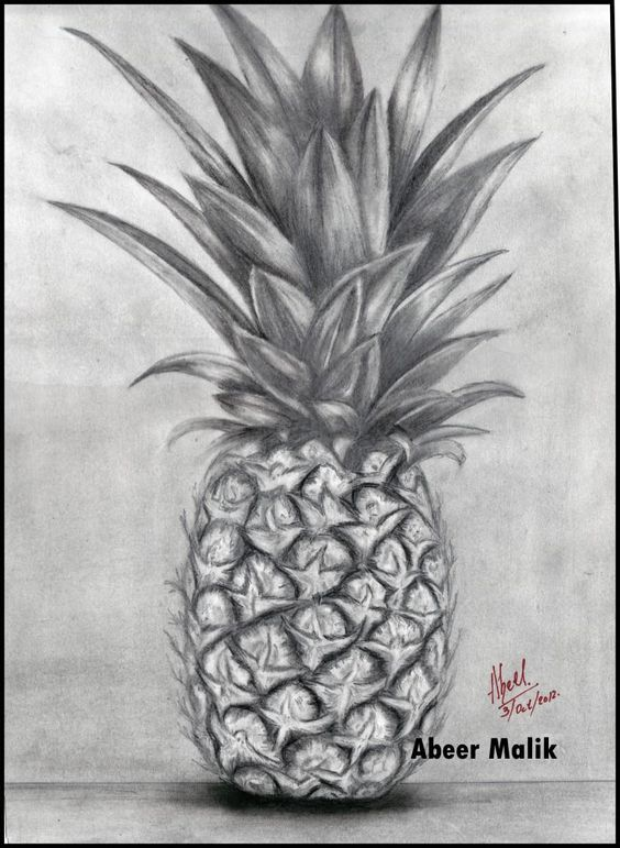 Pineapple pencil sketch - Sketching by abeer's art work in ...