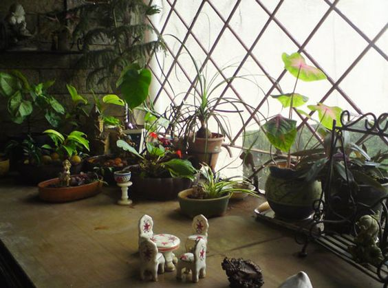Pinterest the world s catalog of ideas - Balcony garden designs india ...