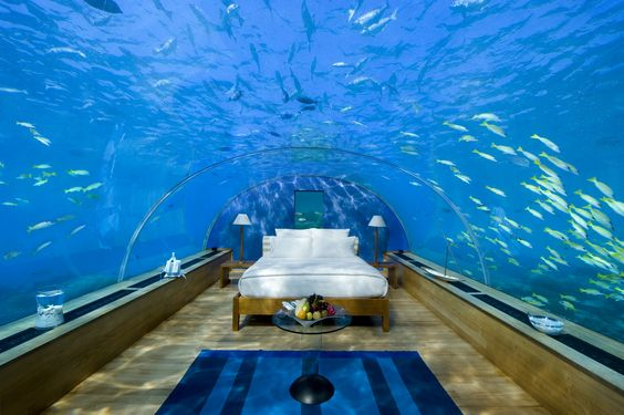 "Underwater Suite at the Hilton Maldives. Lying on that bed must be quite a freaky experience! It gives a whole new angle to the term ""lying in bed and staring at the ceiling"".:)"