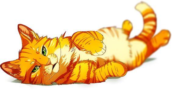 """Résultat de recherche d'images pour """"chat orange"""""""