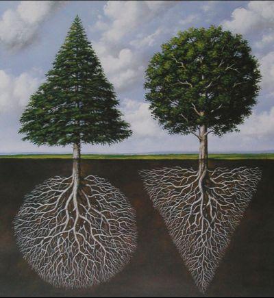natural geometry: