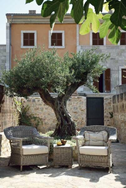 Pin Auf Toskana Garten