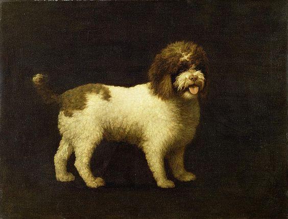 """Perro de aguas irlandés / Water Spaniel"", óleo sobre lienzo / oil on canvas, 1769. Yale Center for British Arts (New Haven, Estados Unidos / USA)"