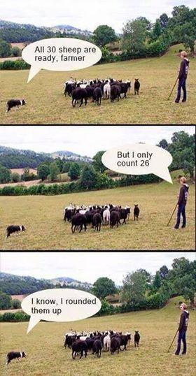 Math humor!