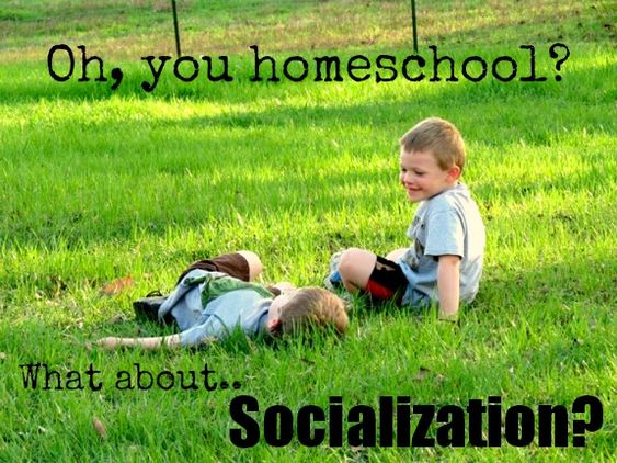Are you hesitant to homeschool because you're worried about socialization? More often than not, when I tell someone that my family homeschools their first ...