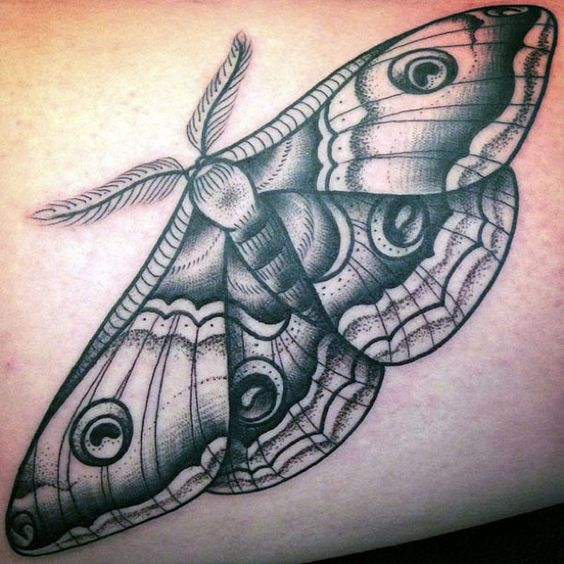 black and gray moth tattoo | Grey Ink Moth Butterfly Tattoo On Shoulder