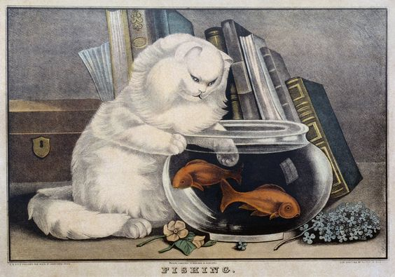 Printable ~ Lithographed illustration, cat with paw in fishbowl, 1848