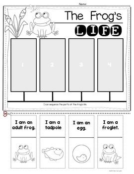 This FREE frog life cycle cut-and-paste worksheet is a fun science ...
