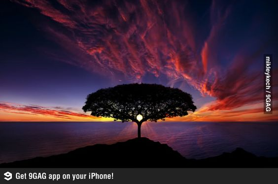 9GAG - An awesome sunset photo.