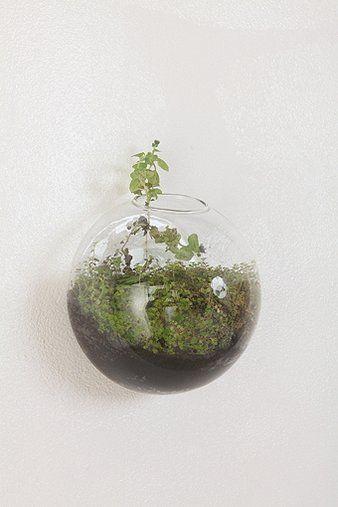Glass Wall Bubble Vase
