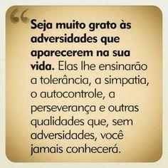 Viva as Adversidades!! *--*