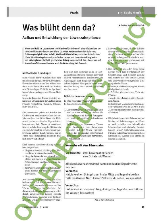 Kompetent Und Praxisnah Lebenslauf Lebenslauf Foto Lebenslauf Muster