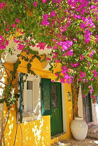Isla Paxos, Grecia
