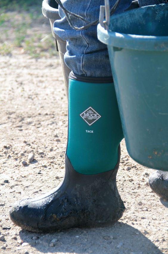 Tack Classic Equestrian Boot, photo by Rhea Solberg | Equestrian ...