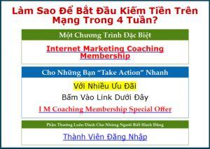 internet marketing coaching   http://hungmarketing.net/im-coaching-wso/
