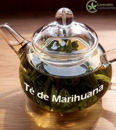 Una de las formas de administración que promueve la Oficina de Cannabis Medicinal del Ministerio de Salud de Holanda, es beber té de marihuana.