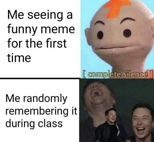 Funny Gifs And Videos Https Www Youtube Com Watch V 0tdhf Ek K Funny Relatable Memes Stupid Funny Memes Really Funny Memes