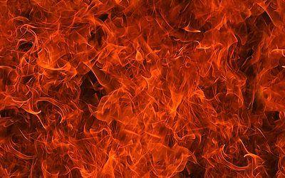 تحميل خلفيات النار القوام 4k الموقد نار لهيب النار البرتقال النار الملمس الخلفيات النار Besthqwallpapers Com Vegetables Carrots