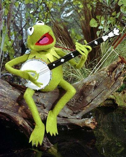 Image result for kermit the frog banjo