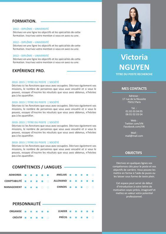Cv Moderne Grey Resume Design Resume Design Free Resume Design Professional