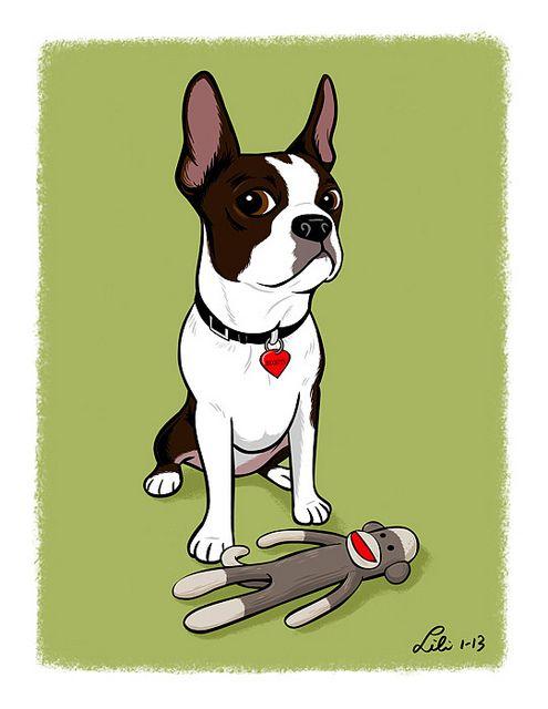 Lili Chin: Custom pet portraits, fundraiser artwork for Boston Terrier rescue, dog training and behavior-related illustrations. http://lilichin.com/