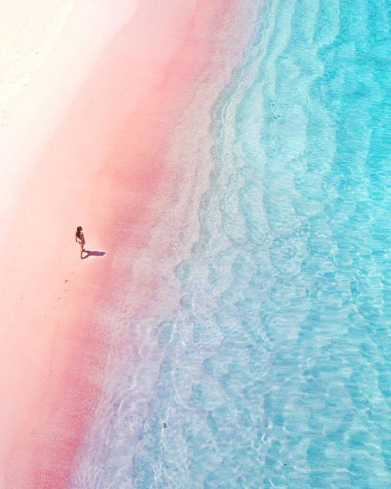 """18.8 k gilla-markeringar, 194 kommentarer - Samira Kazan - London (@alphafoodie) på Instagram: """"It's been a while since I shared a pink nature photo , who can guess where this dream location is?…"""""""