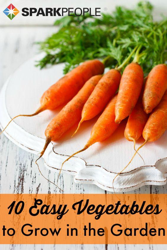 The 10 Easiest Vegetables To Grow Vegetables Vegetable 400 x 300