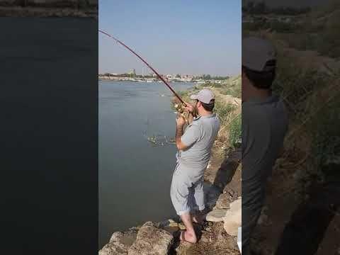 الصيد بالسنارةصياد يصطاد سمكة كبيرة بالسنارة او المكنة ويعانى من اجل اخر Youtube Places To Visit Enjoyment