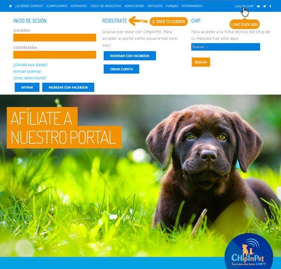 Entra a nuestro portal web para mascotas http://chipinpe.com  y disfruta de todo lo que hay para ese ser amado!