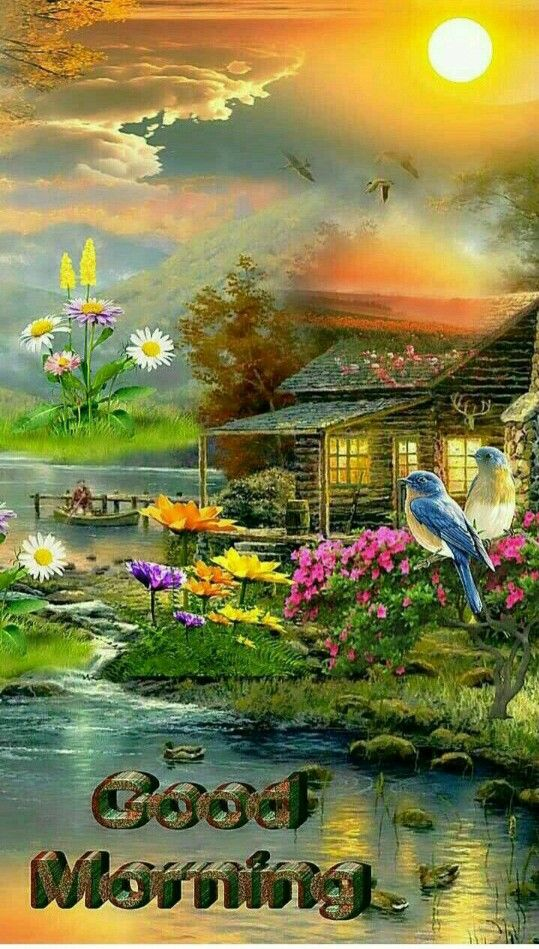 Pin By Evelyn Saunders On Wishes Good Morning Beautiful Pictures Good Morning Gif Good Morning Nature