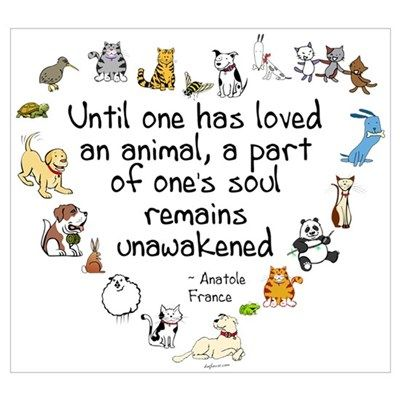 Afbeeldingsresultaat voor until one has loved an animal a part of one's soul remains unawakened